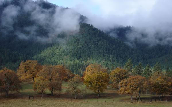 the little applegate valley
